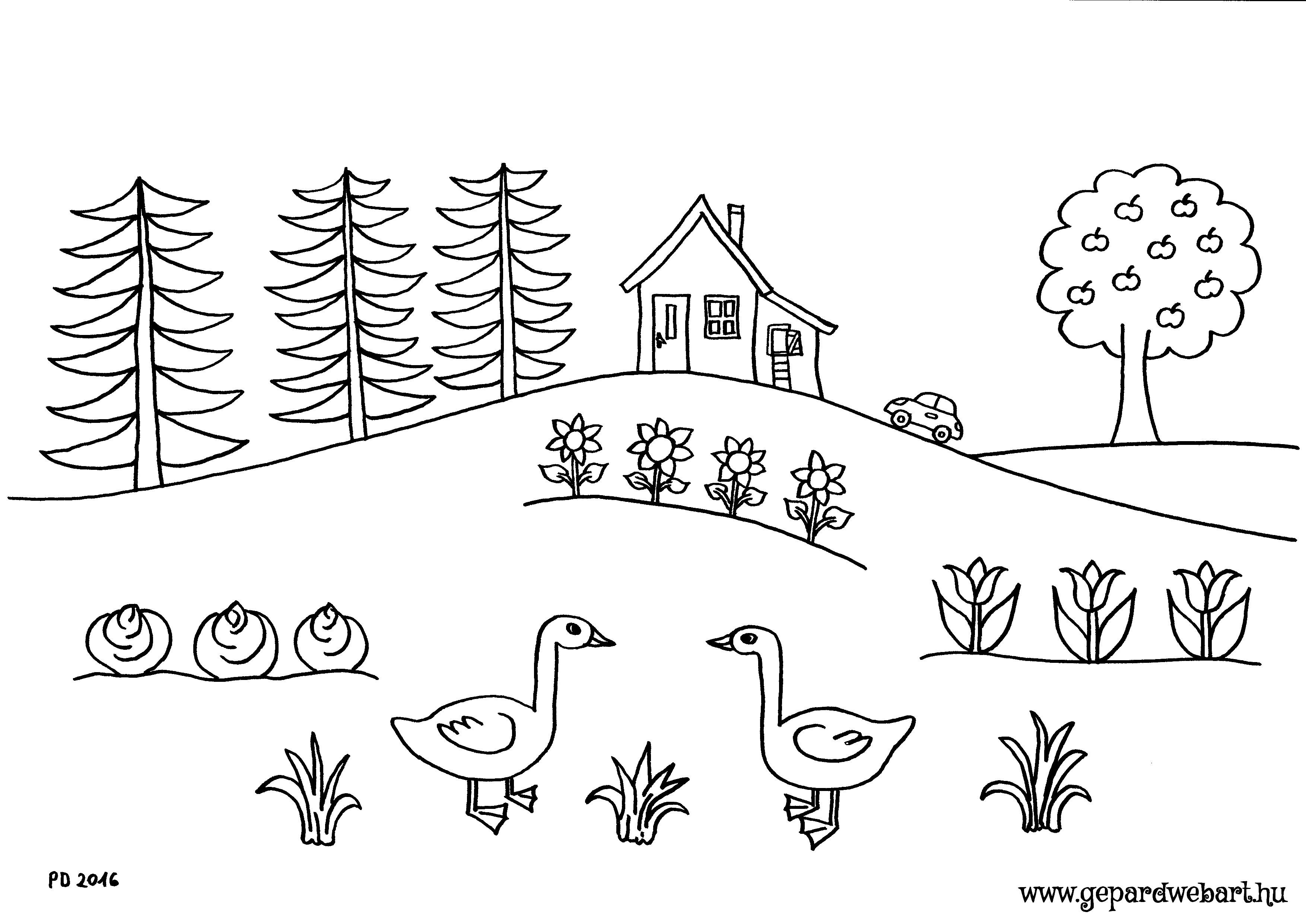 libás kert kiszínező