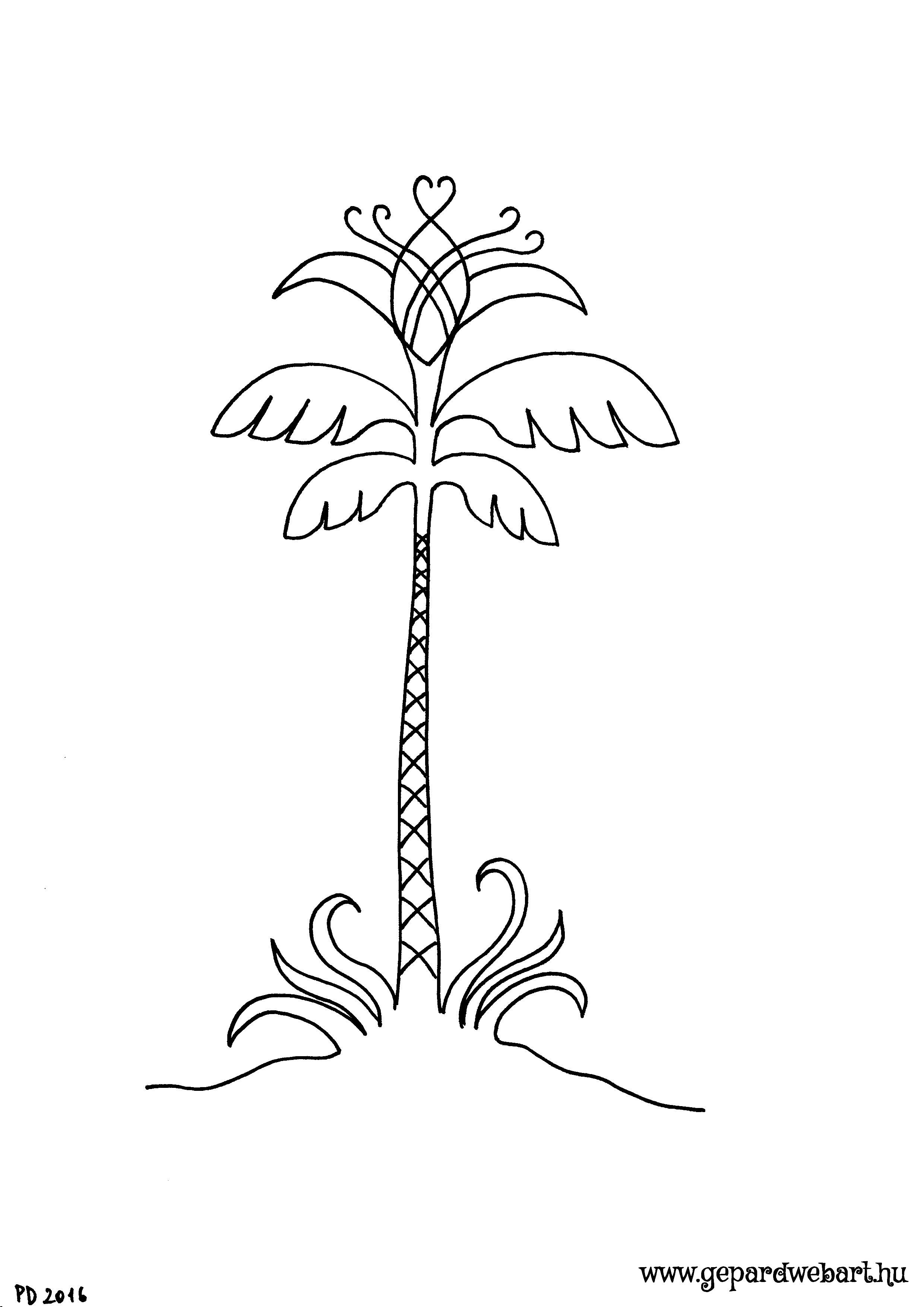 pálmafa kiszínező