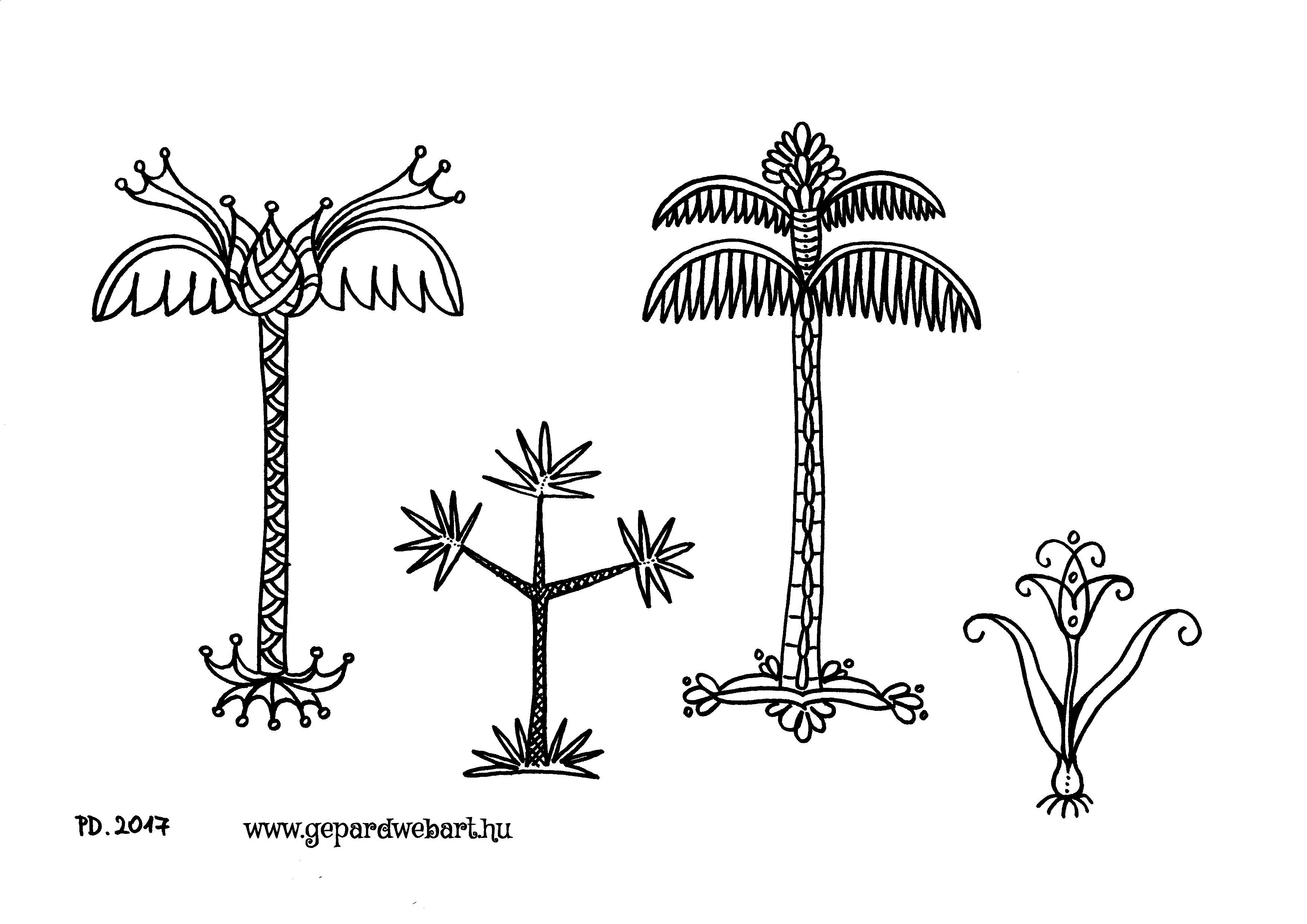 pálmafás kiszínező