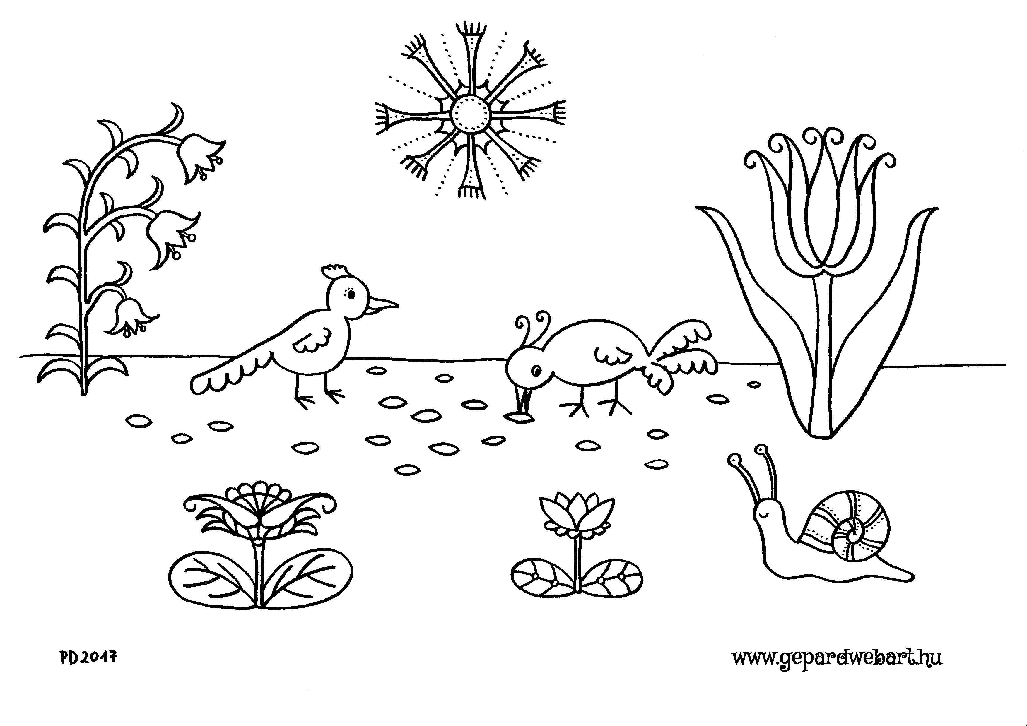 csipegetős madarak