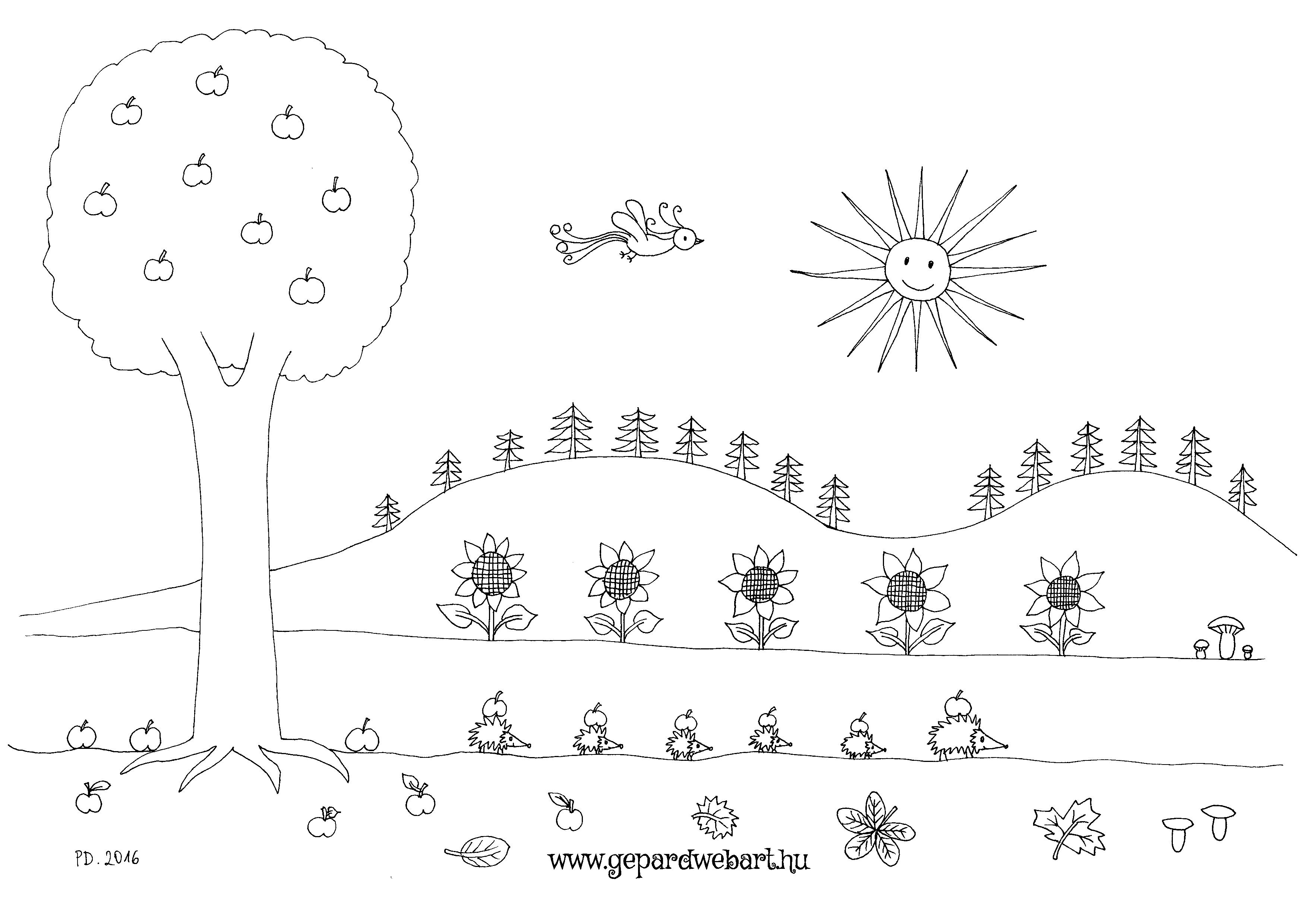 sünis kiszínező
